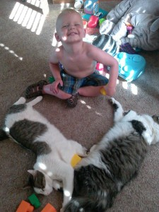 A friend noticed the heart shape on the ground - makes sense, Ezra loves our kitties.