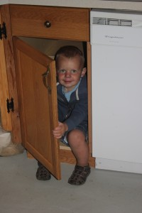 Playing peekaboo - He was able to get his entire body in this cupboard.